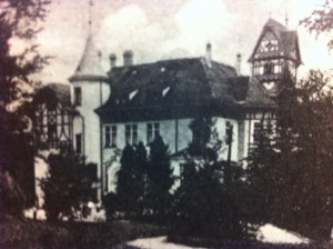 "The ""villa"" at Wolfsgrün, also referred to as a castle. Source: Minert, p. 527."